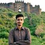 Talha Arif Profile picture